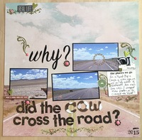 Why? did the cow cross the road?