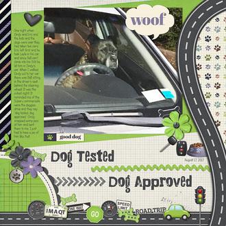 Dog Tested Dog Approved