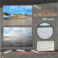 The Famous Amazon River