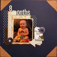 8 months (Dec 2017 My Mood Challenge)