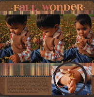 Fall Wonder