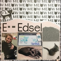 E is for Edsel