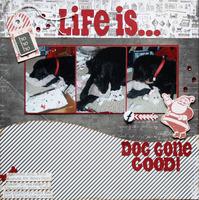 Life is...Dog Gone Good