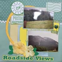 Roadside Views