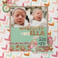 Welcome Baby Ella *Mood Board Challenge*