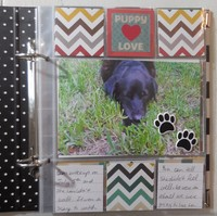 Bear's Album: Pages 1 thru 4