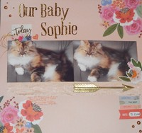 Our Baby Sophie