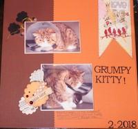 Grumpy Kitty!
