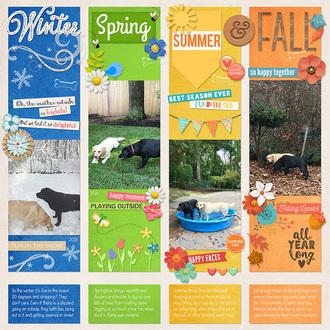 Winter, Spring, Summer & Fall
