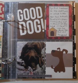 Bear's Album: Pages 5 thru 8