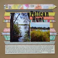 Pelican Hunt