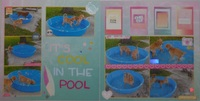 It's Cool In The Pool