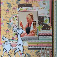 NSD Llama layouts