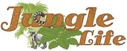 Jungle Life Bo Bunny
