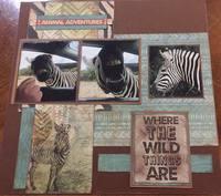 Zebra Callings
