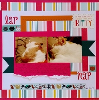 Lap - Nap