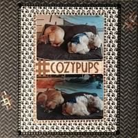 #cozypups