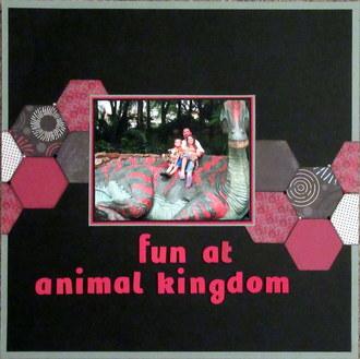 Fun at Animal Kingdom
