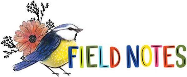 Field Notes Vicki Boutin