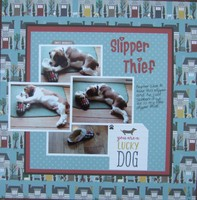 Slipper Thief