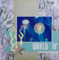 World of Jellies
