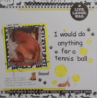 I would do anything for a tennis ball