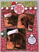 The Santa Hat