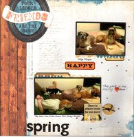 The Pets - Spring 2014