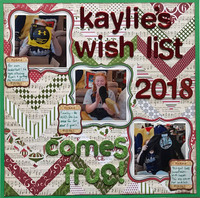 Kaylie's Wish List Comes True!