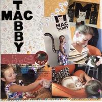 Mac Tabby