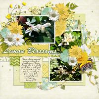 Lemon Blossoms