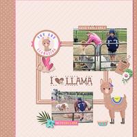 I Love a Llama