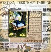Hillbilly Hammock