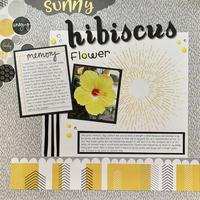 Sunny Hibiscus Flower