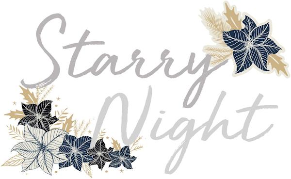 Starry Night KaiserCraft Kaiser Craft