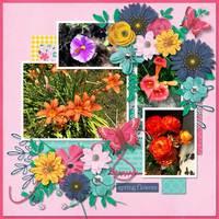 spring blooms 19