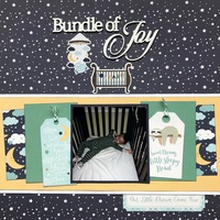Bundle of Joy (Aug Build)