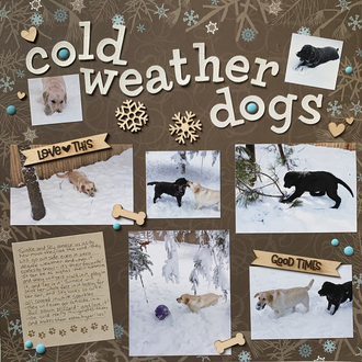 Cold Weather Dogs