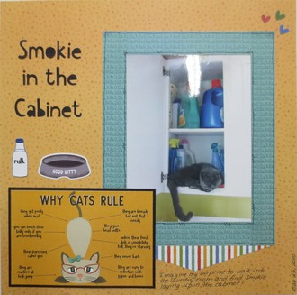 Smokie in the Cabinet