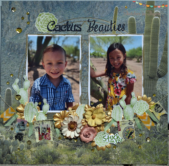 My Cactus Beauties