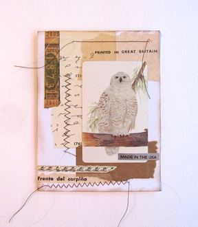 Owl Playing Card