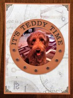 It's Teddy Time