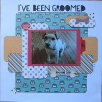 I've Been Groomed