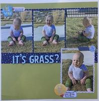 It's Grass?