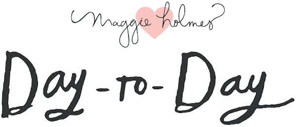 Day To Day Day-to-Day Maggie Holmes Planner Disc Planner American Crafts