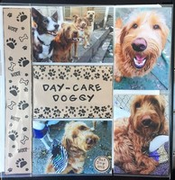 Day-Care Doggy
