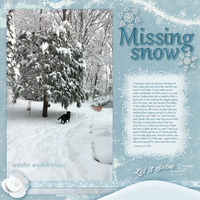 Missing Snow