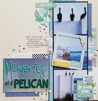 Memories of a pelican