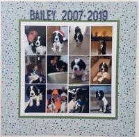 Bailey 2007-2019