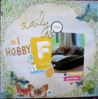 Daily #1 Hobby